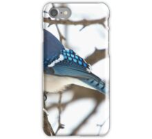 Winter Jay 2 iPhone Case/Skin