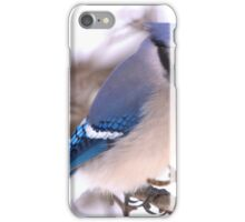Winter Jay iPhone Case/Skin