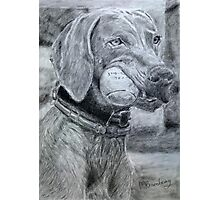 Dog with Ball Graphite Photographic Print