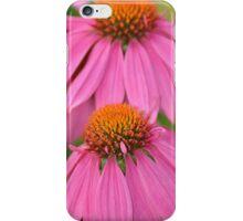 Pink echinacea iPhone Case/Skin