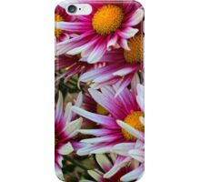 Blooming Daisies iPhone Case/Skin