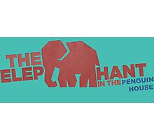 Finding Carter - elephant in the penguin house Photographic Print