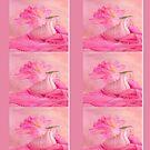 Vintage Pink Peony In Vase by daphsam