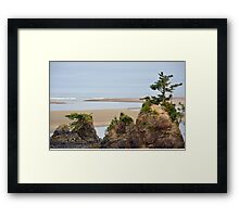 Oregon coastal scenery Framed Print