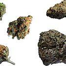 420 Buds #74 by sensameleon