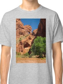 Into Your Soul Classic T-Shirt