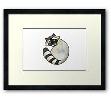 Cute watercolor racoon Framed Print
