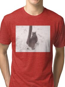 Snow Cat Tri-blend T-Shirt