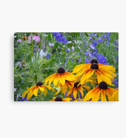 Yellow rudbeckia flowers Canvas Print