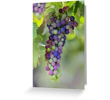 Ripen Greeting Card