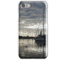Soft Sky with Two Birds iPhone Case/Skin
