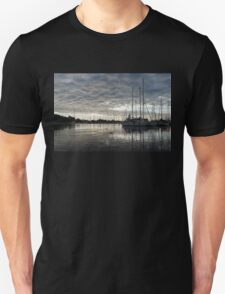 Soft Sky with Two Birds Unisex T-Shirt