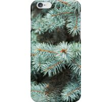 Fir tree  iPhone Case/Skin