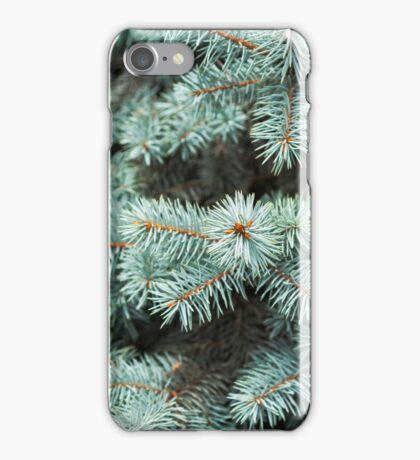 Fir tree  iPhone Case/Skin
