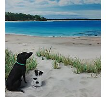 Dogs resting on beach Photographic Print