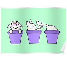 Cat Plants Poster