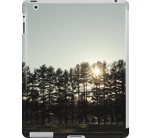 Iroquois springs tree scene iPad Case/Skin