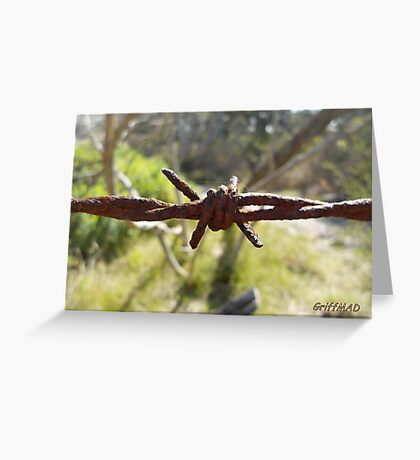Old Barbed-Wire Greeting Card