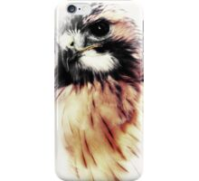 Catching dreams iPhone Case/Skin