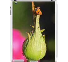 Lady Bug iPad Case/Skin