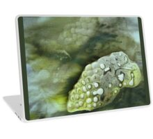 Solar Print Abstract 1- Mirrored Laptop Skin