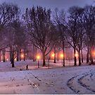 Winter Sledding by ponycargirl
