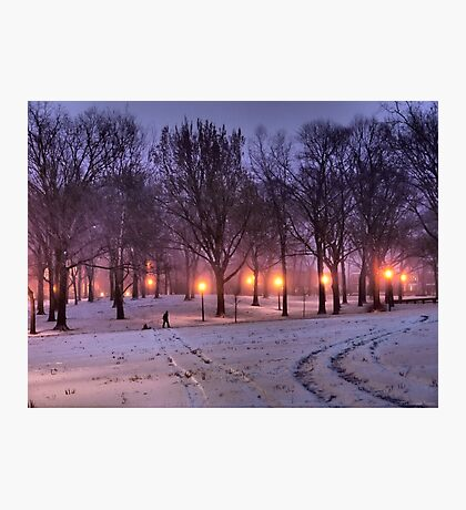 Winter Sledding Photographic Print