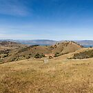 Bethanga Panorama by Natalie Ord