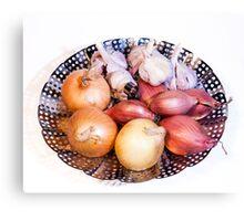 onion, shallot, garlic Canvas Print