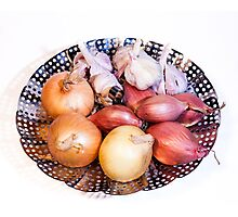 onion, shallot, garlic Photographic Print