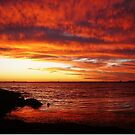 Red Sky at Night, Elwood Beach by Roz McQuillan