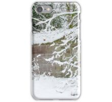 Cabin in the Woods, iPhone Case/Skin