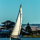 Goolwa Regatta Yacht Club Christmas Twlight Races by Stuart Daddow Photography
