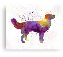 Drentsche Partridge Dog in watercolor Canvas Print