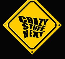 CRAZY STUFF NEXT by DAdeSimone