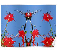 Red flowers, blue sky, mirror Poster