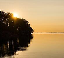 Golden Sunrise Over the Trees - the Joys of Summer by Georgia Mizuleva