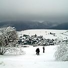 The joy of snow by Arie Koene