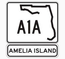 A1A - Amelia Island, Florida - Sun and Fun! One Piece - Short Sleeve