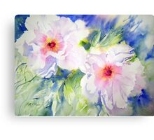 Peony Perfection Canvas Print