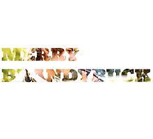 Merry Brandybuck by ElvenMerchant