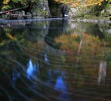 River Braan by The Hermitage by Maria Gaellman