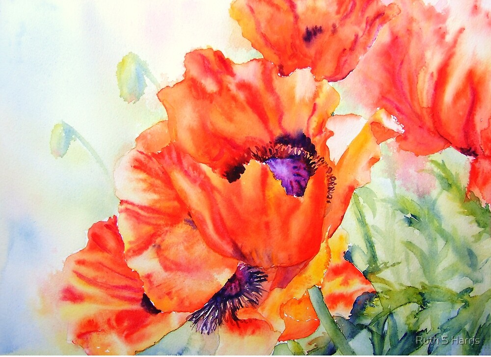 Song of Summer by Ruth S Harris