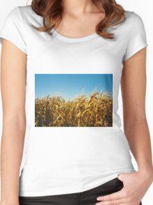 fields & wind Women's Fitted Scoop T-Shirt