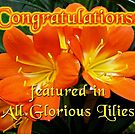 NOT FOR SALE - BANNER - ALL GLORIOUS LILIES FEATURES by MotherNature