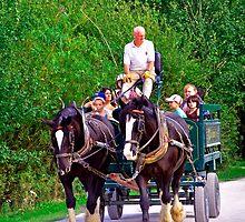 Horse-drawn Cart, Carsington Water   by Rod Johnson