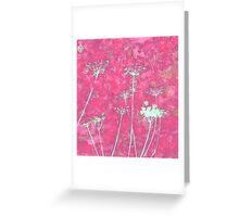 Pink Mock Bishop's Weed Greeting Card