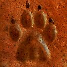 """Terracotta Paw Print"" by Carter L. Shepard""  by echoesofheaven"