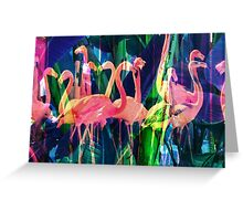 Flamingo Dance Greeting Card