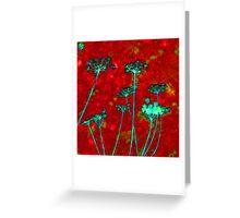 Red Mock Bishop's Weed Greeting Card